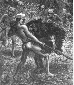 A Victorian print of an orangutan attacking a native.