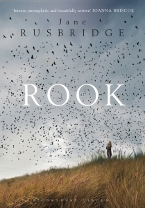 Rook Book Cover