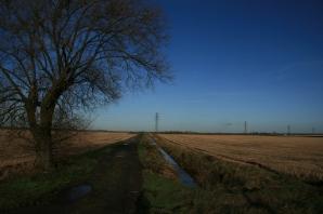 Lincolnshire Fenland