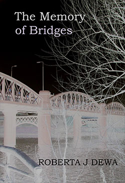 The Memory of Bridges Book Cover