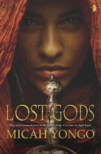 Book cover for Lost Gods. Close up of hooded man with sword hilt resting on his chin.